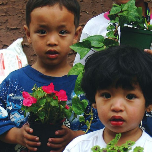 GROWING GREENER KIDS 2.0